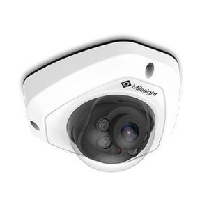 MS-C5373-PB Vandal proof dome camera